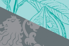 vizual_banner-web-L
